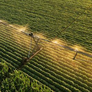 irrigation water treatment